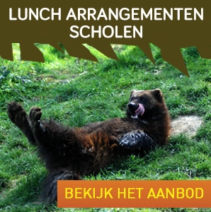 lunch arrangementen scholen V2
